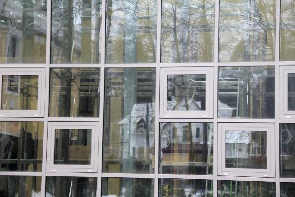 Оранжерея в Репино, фото №3