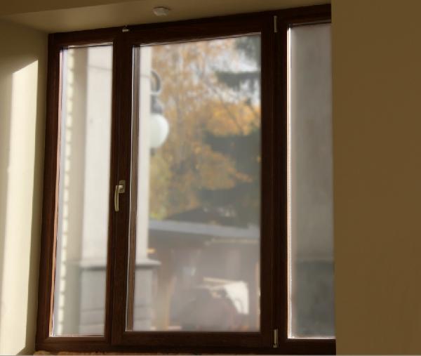 Лисий Нос, частный коттедж, фото №18